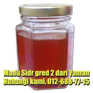 Madu Sidr Dari Yaman 100g (Gred B)